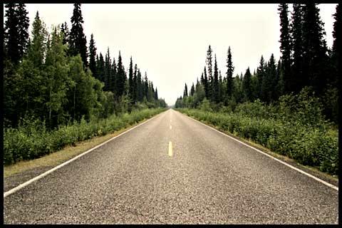 The Chena Road